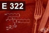 E322 Лецитини
