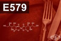 E579 Железен глюконат