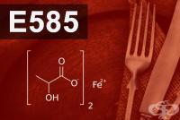 E585 Железен лактат