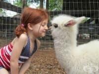 30 примера, че децата и домашните любимци излъчват любов и щастие