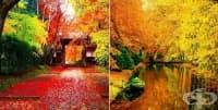 25 зашеметяващи есенни изображения