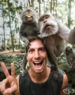 20 снимки с любопитни животни