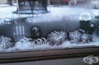 27 доказателства, че зимата е едновременно брилянтен художник, дизайнер и скулптор