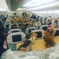 22 ситуации, които показват, че в самолета може да се случи всичко