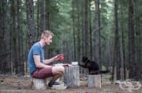 Какво е да живееш и пътуваш с котка в бус?