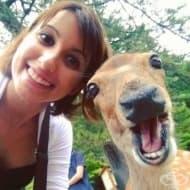 20 животни, които имат по-добро селфи от вас