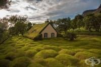 Приказните скандинавски къщички със зелени покриви