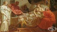 Дисекции и вивисекции в Древна Елада
