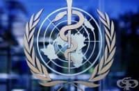 История на Световната здравна организация