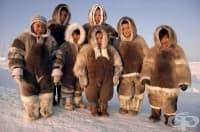 Генетичният код на инуитите ги прави по-здрави, но и по-ниски