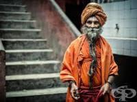 Място на дравидианската (индийската) раса в историята на човешката еволюция
