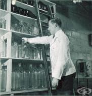 Образователни степени по фармация в Русия до 1881 година