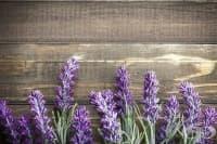 Популярни фолклорни лечебни вярвания за медицинската употреба на лавандулата