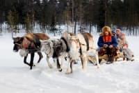 Традиционната медицина на саамите - най-северните жители на Европа