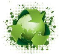 Влияние на екологията в развитието на биологията