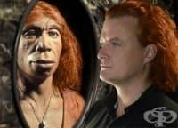 Връзка между неандерталците и съвременните хора