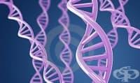 Worldwide Research & Development като част от фармацевтичната компания Пфайзер. Първа част