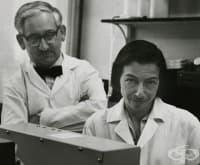 Заедно в живота и в науката: Райнхолд и Рут Ерика Бенеш и проучванията им, свързани с хемоглобина