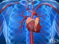 История на кардиологията