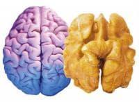 Хранителните продукти са полезни за тези части на тялото, на които приличат