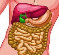 Хранене при холецистектомия (отстранена жлъчка)