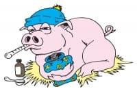 Хранене при свински грип (Калифорнийски)