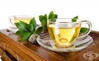 Защо да пием зелен чай