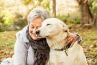 Близо до хората: Зайци, морски свинчета и кокошки помагат в борбата със самотата и деменцията