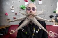 Вижте снимките от конкурса за брада и мустаци на 2015 година