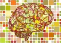 Малки групи от неврони в хипокампуса отговарят за епизодичната памет