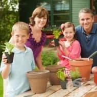 Кои билки са подходящи за вашата градина?