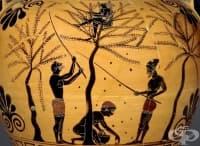 Какво древните гръцки философи наистина са мислели относно вегетарианството?