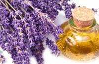 Пълно ръководство за използване на лавандулово етерично масло в дома ви