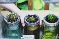 Най-подходящите зеленчуци и билки за отглеждане вкъщи