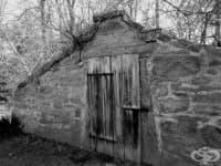 Мърси Браун: последният вампир в Нова Англия