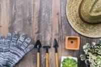 Подгответе градината за зимните дни