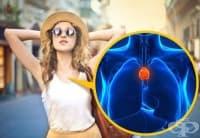 9 органа от човешкото тяло, които все още не са добре изследвани
