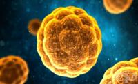 Хепатитен A вирус