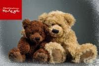"""Близо 2 милиона лева са събрани от последното издание на благотворителната инициатива """"Българската Коледа"""""""