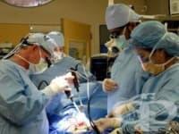 Създадоха Фонд за трансплантации към здравното министерство