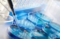 Великобритания разреши зачеването на бебета с ДНК от трима родители