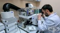 Екип от руски и словенски учени създаде наноантибиотици на базата на сребро и цинк