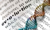Учени откриха доказателство, че съвременните хора също еволюират