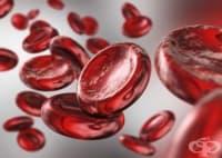 Значимо генно откритие може да подобри живота на хората с кръвни нарушения