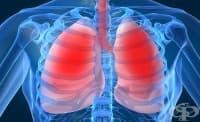 България вече е на второ място по смъртни случаи от белодробни заболявания