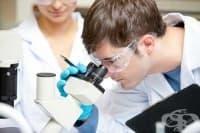 Имунотерапията - революция в битката с рака