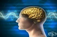 Мозъчно стимулиране е повишило нивото на съзнание при 35-годишен мъж, изпаднал в кома