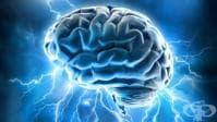 Идентифицираха частта от мозъка, отговаряща за чувството на самота