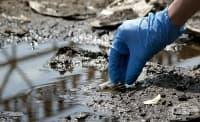Глобалното замърсяване причинява смъртта на 9 млн. души всяка година