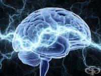 Невробиолози разгадаха механизмите на болката